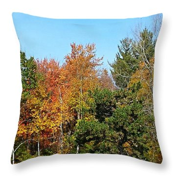Full Fall Throw Pillow