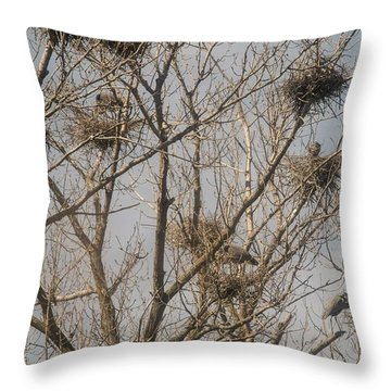 Throw Pillow featuring the photograph Full House by David Bearden