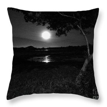 Full Moon 05 Throw Pillow