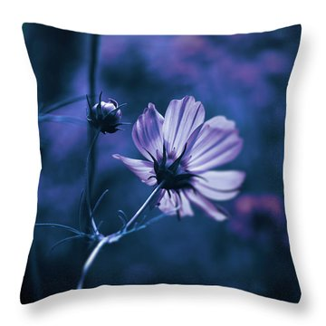 Throw Pillow featuring the photograph Full Moon Cosmos by Douglas MooreZart