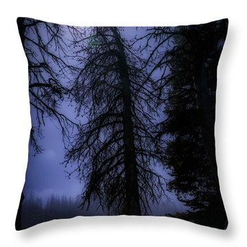 Full Moon In The Woods Throw Pillow