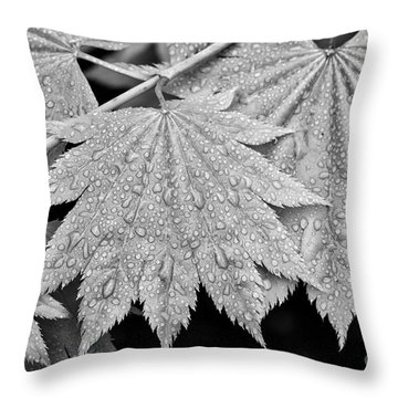 Full Moon Maple Leaf After A Spring Rain Throw Pillow