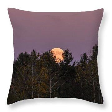 Full Moon Over Orchard Throw Pillow
