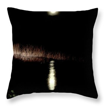 Full Moon Over Piermont Creek Throw Pillow