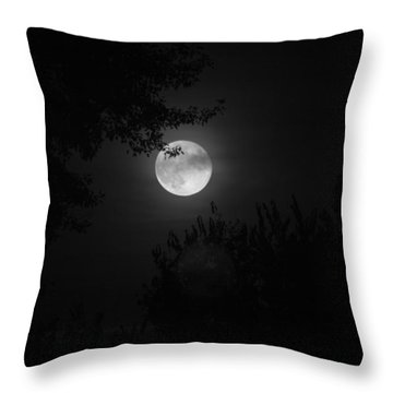 Full Moon With Branches Throw Pillow