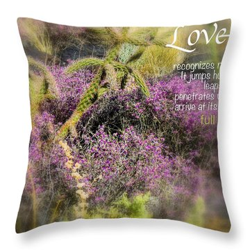 Full Of Hope Throw Pillow by David Norman