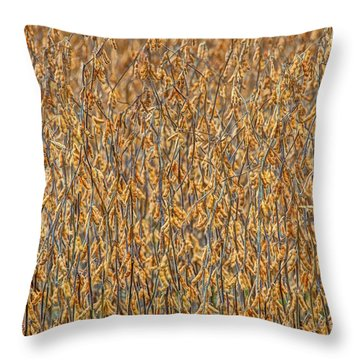 Throw Pillow featuring the photograph Full  by Wanda Krack