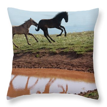 Fun In The Rockies- Wild Horse Foals Throw Pillow