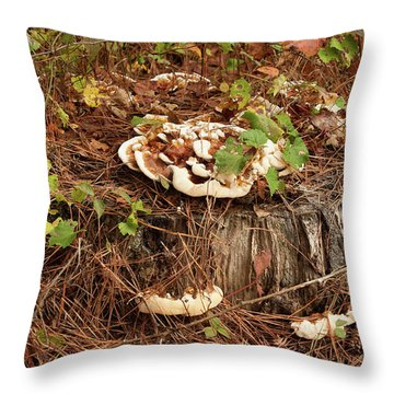 Throw Pillow featuring the photograph Fungi And Needles And Tree Trunk  Oh My by Carol Lynn Coronios