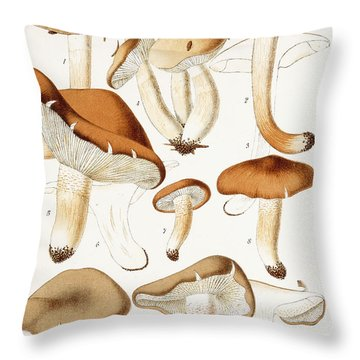 Fungi Throw Pillow by Jean-Baptiste Barla