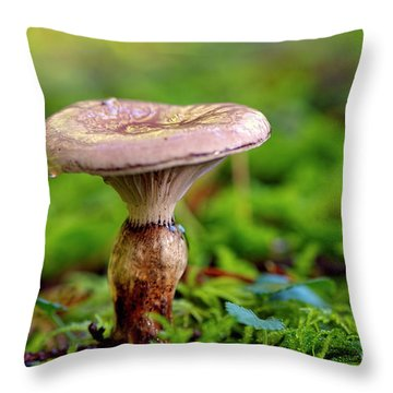 Throw Pillow featuring the photograph Fungus  by Sharon Talson