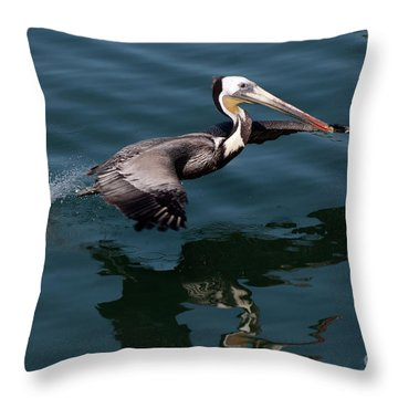 Funky Wings Throw Pillow