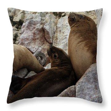 Fur Seals On The Ballestas Islands, Peru Throw Pillow by Aidan Moran