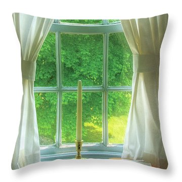 Furniture - Lamp - Still Life In A Window  Throw Pillow by Mike Savad