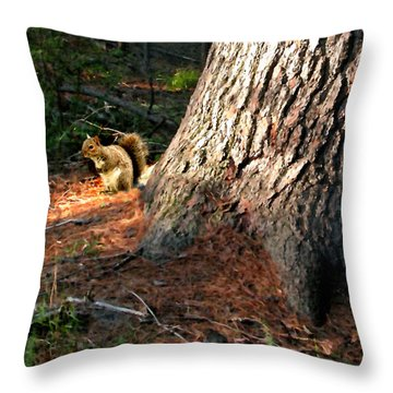 Furry Neighbor Throw Pillow by Paul Sachtleben