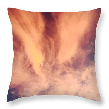 Fury Throw Pillow by Russell Keating