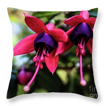 Fuchsia Throw Pillow