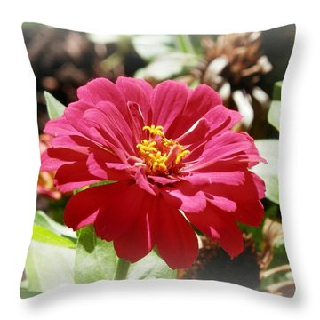 Fuschia Glory Throw Pillow