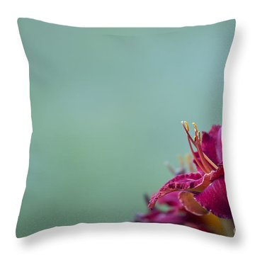 Fuchsia In Bloom Throw Pillow