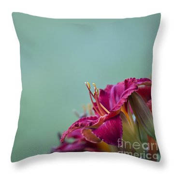 Fuchsia In Bloom Throw Pillow by Andrea Silies