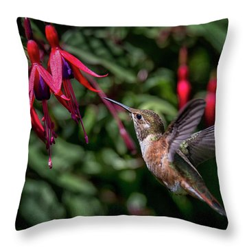 Fuschia Throw Pillow by Randy Hall