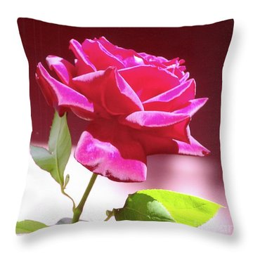 Fuschia Rose Throw Pillow