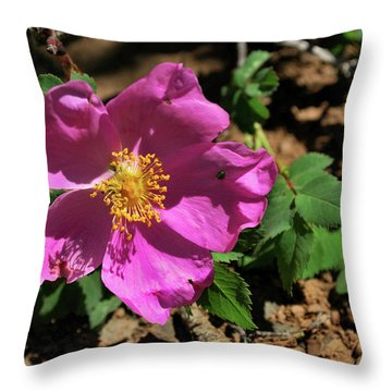 Fuschsia Mountain Accent Throw Pillow