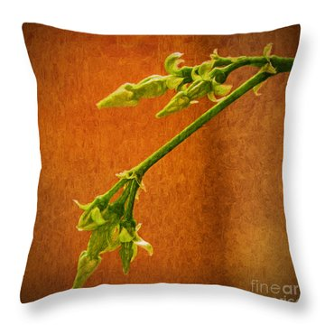 Future Stars Throw Pillow