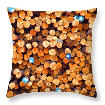 Future Two By Fours Throw Pillow