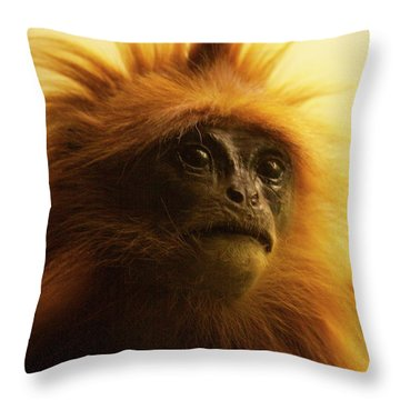 Fuzzhead Throw Pillow by Xn Tyler