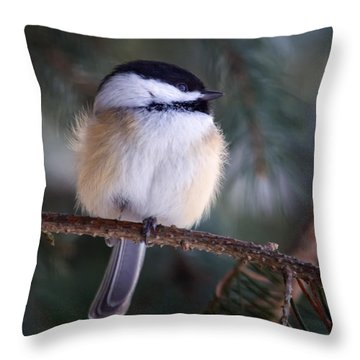 Fuzzy Chickadee Throw Pillow
