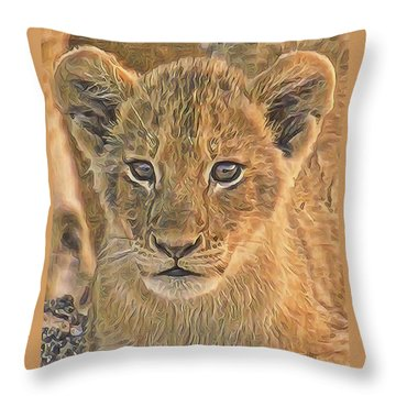 Fuzzy Cubby Throw Pillow