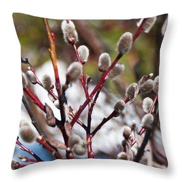 Fuzzy Wuzzy Throw Pillow by Bob and Nancy Kendrick