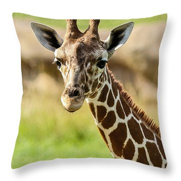 G Is For Giraffe Throw Pillow by John Haldane