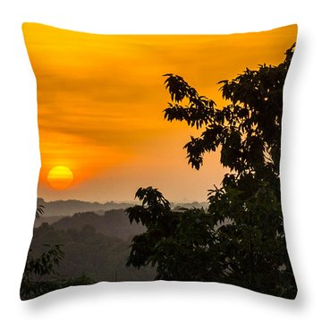 Gainesville Sunrise Throw Pillow