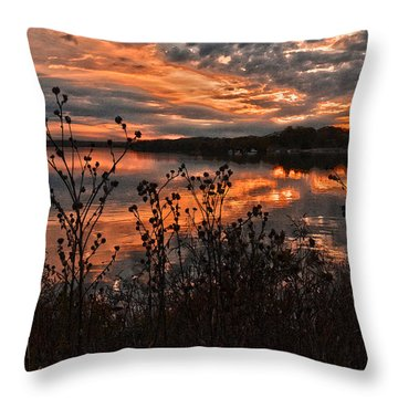 Gainesville Sunset 2386w Throw Pillow