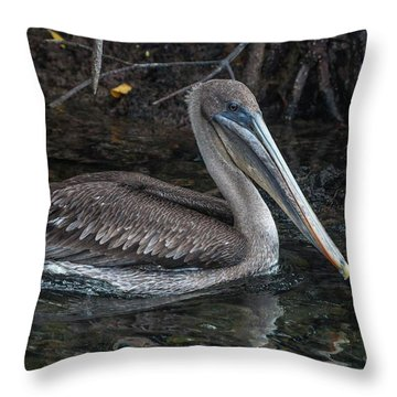 Galapagos Pelican Throw Pillow