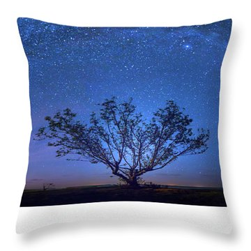 Galatika Throw Pillow by Mark Andrew Thomas