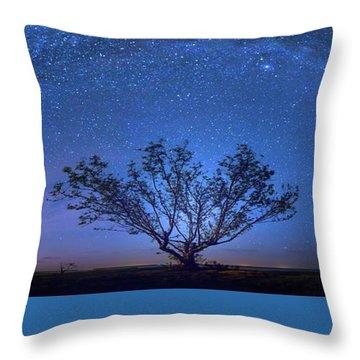 Galatika Throw Pillow