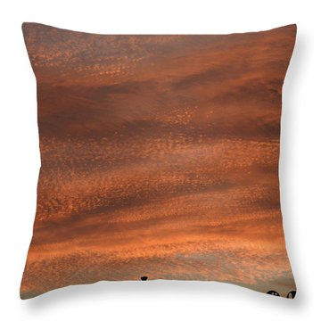 Throw Pillow featuring the photograph Gallery Sunrise 2 by Mark Blauhoefer