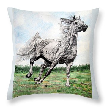 Galloping Arab Horse Throw Pillow by Melita Safran