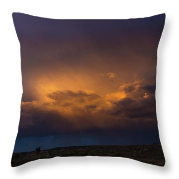 Gallup Dreaming Throw Pillow