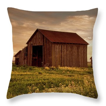 Galt Barn At Sunset Throw Pillow