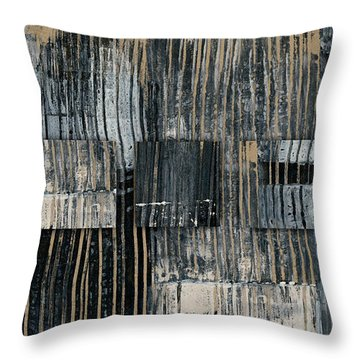 Throw Pillow featuring the photograph Galvanized Paint Number 2 Horizontal by Carol Leigh