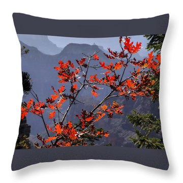 Gamble Oak In Crimson Fall Splendor Throw Pillow