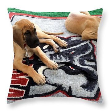 Gameday Great Dane Puppies Throw Pillow