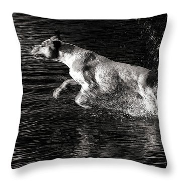 Games On The Water 2 Throw Pillow