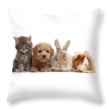 Gang Of Four Throw Pillow