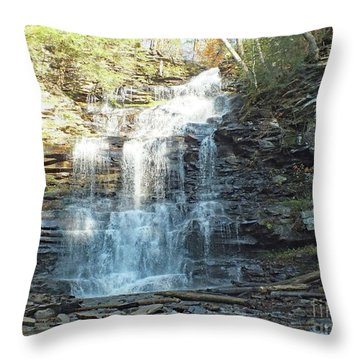 Ganoga Falls 2 - Ricketts Glen Throw Pillow