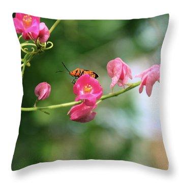 Throw Pillow featuring the photograph Garden Bug by Megan Dirsa-DuBois